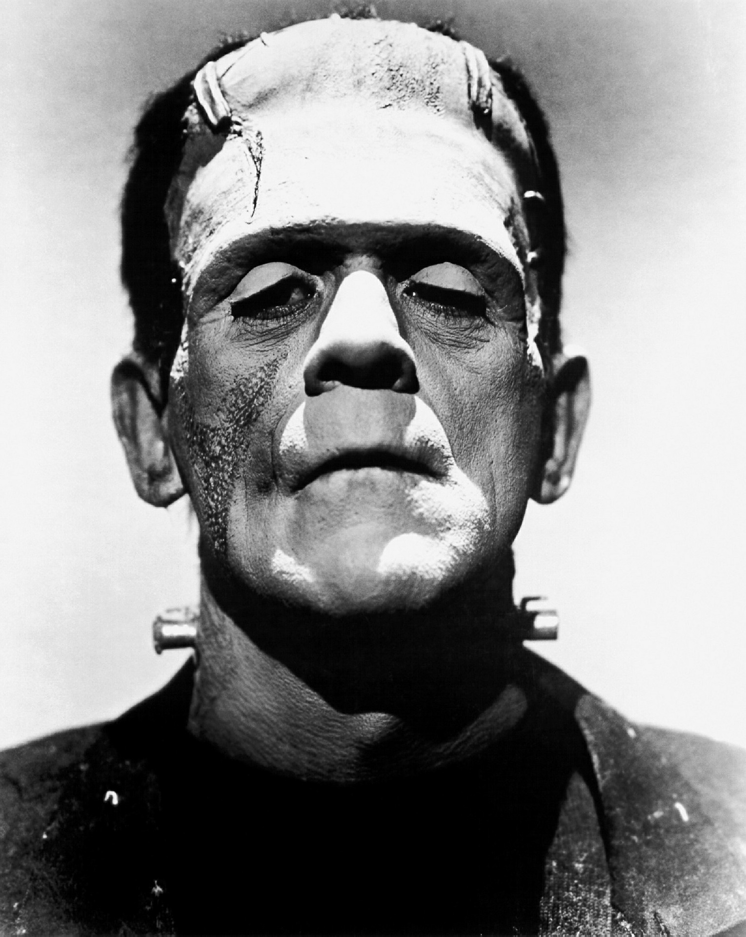 Frankenstein: Anatomy of a Masterpiece with Literature and Film ...